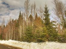 Lot for sale in Weedon, Estrie, Chemin  Béland, 15773450 - Centris