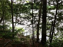 Lot for sale in Nominingue, Laurentides, Chemin des Alouettes, 14379941 - Centris