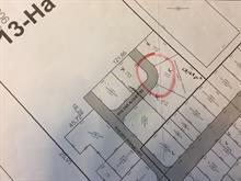 Terrain à vendre à Saint-Damien-de-Buckland, Chaudière-Appalaches, Rue des Alouettes, 22121450 - Centris