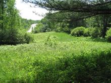 Lot for sale in Thorne, Outaouais, Chemin  Schwartz, 11060186 - Centris