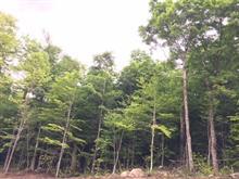 Terrain à vendre à Stoneham-et-Tewkesbury, Capitale-Nationale, Chemin des Bolets, 24425274 - Centris
