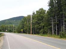 Terrain à vendre à Petite-Rivière-Saint-François, Capitale-Nationale, Chemin de la Martine, 10600595 - Centris