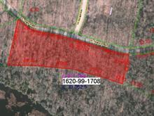 Terrain à vendre à Lac-Tremblant-Nord, Laurentides, Chemin  Thomas-Robert, 27846475 - Centris