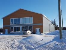 Industrial building for sale in Saint-Roch-de-l'Achigan, Lanaudière, 245, Rue  Armand-Majeau Sud, 28937948 - Centris
