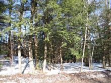 Lot for sale in Chelsea, Outaouais, Chemin  Upper Adamson, 17054750 - Centris