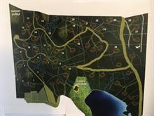Terrain à vendre à Mont-Tremblant, Laurentides, Rue  Dubois, 20482488 - Centris