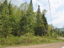 Terrain à vendre à Lac-Supérieur, Laurentides, Chemin des Lilas, 12860888 - Centris