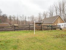 Hobby farm for sale in Saint-Lazare, Montérégie, 3696A, Chemin  Sainte-Angélique, 25645922 - Centris