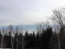 Lot for sale in Petite-Rivière-Saint-François, Capitale-Nationale, Chemin  Savard, 9520218 - Centris
