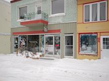 Business for sale in Sainte-Agathe-des-Monts, Laurentides, 60, Rue  Saint-Vincent, 13458123 - Centris