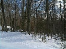 Lot for sale in Saint-Sauveur, Laurentides, Chemin de l'Athea, 17240624 - Centris