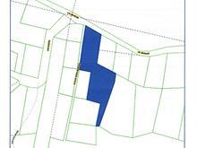 Terrain à vendre à Montcalm, Laurentides, Chemin  Morgan, 27702275 - Centris