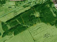 Terre à vendre à Saint-Côme/Linière, Chaudière-Appalaches, 9e Rue Ouest, 20707059 - Centris