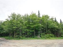 Lot for sale in Saint-Adolphe-d'Howard, Laurentides, Chemin de la Colline, 28429190 - Centris