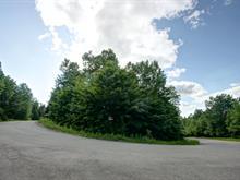 Lot for sale in Sainte-Agathe-des-Monts, Laurentides, Rue du Mont-Rainer, 28106950 - Centris