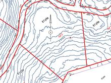 Terrain à vendre à Lantier, Laurentides, Montée de la Baie, 12482451 - Centris