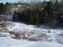 Lot for sale in La Malbaie, Capitale-Nationale, Rue  Saint-Raphaël, 9697598 - Centris