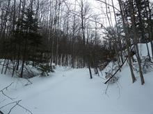 Terre à vendre à La Pêche, Outaouais, 22, Chemin du Soleil, 9479902 - Centris