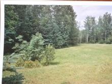 Lot for sale in Larouche, Saguenay/Lac-Saint-Jean, 1549, Chemin du Ruisseau, 24444196 - Centris