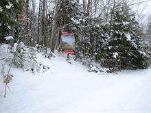 Lot for sale in Orford, Estrie, Chemin du Lac-Brompton, 25858344 - Centris