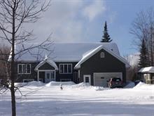 House for sale in Saint-André-Avellin, Outaouais, 36, Chemin  Saint-Pierre, 20386042 - Centris