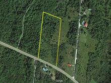 Lot for sale in Beaulac-Garthby, Chaudière-Appalaches, Route  161, 19682233 - Centris
