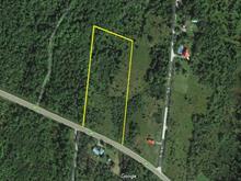 Terrain à vendre à Beaulac-Garthby, Chaudière-Appalaches, Route  161, 19682233 - Centris