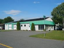 Commercial building for sale in Victoriaville, Centre-du-Québec, 359B, Rue  Girouard, 19798702 - Centris
