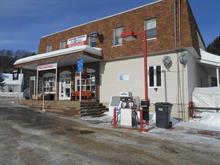 Commercial building for sale in Chute-Saint-Philippe, Laurentides, 1 - 3, Chemin des Lacs, 10025349 - Centris