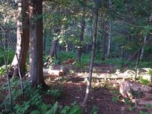 Lot for sale in Rawdon, Lanaudière, Rue  Morel, 15125089 - Centris