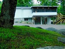 Maison à vendre à Chute-Saint-Philippe, Laurentides, 439, Montée des Chevreuils, 28135371 - Centris