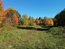 Land for sale in L'Isle-aux-Allumettes, Outaouais, Chemin de la Culbute, 21699324 - Centris