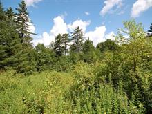 Lot for sale in Val-David, Laurentides, Rue des Lilas, 27864438 - Centris