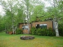 Maison à vendre à Saint-David-de-Falardeau, Saguenay/Lac-Saint-Jean, 472, 5e ch. du Lac-Clair, 17597452 - Centris