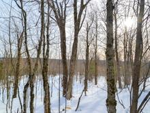Land for sale in Beaulac-Garthby, Chaudière-Appalaches, Route du 2e-Rang, 28417383 - Centris