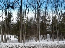Lot for sale in Mascouche, Lanaudière, Chemin des Anglais, 9117049 - Centris
