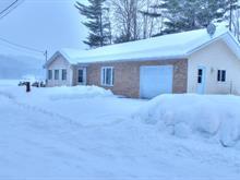 Maison à vendre à Bowman, Outaouais, 98C, Chemin de la Lièvre Nord, 15540754 - Centris