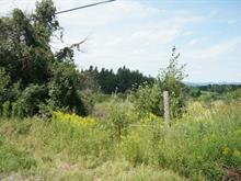 Terrain à vendre à Westbury, Estrie, Route  253, 11374668 - Centris