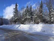 Lot for sale in Wentworth, Laurentides, Chemin du Paradis, 20890925 - Centris