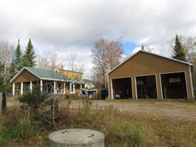 Maison à vendre à Rivière-Rouge, Laurentides, 457, Chemin du Lac-de-la-Haie, 12707227 - Centris