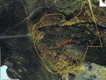 Lot for sale in Val-d'Or, Abitibi-Témiscamingue, Rue  Tremblay, 14016412 - Centris
