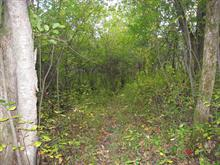 Terrain à vendre à Chelsea, Outaouais, Chemin  Nathaniel, 27836316 - Centris