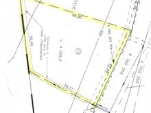 Lot for sale in Sainte-Anne-des-Lacs, Laurentides, Chemin des Clématites, 26322483 - Centris