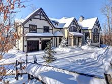 Maison à vendre à Mont-Tremblant, Laurentides, 565, Chemin de la Réserve, 9019611 - Centris
