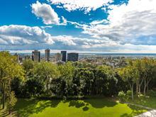 Condo à vendre à Ville-Marie (Montréal), Montréal (Île), 3150, Place  De Ramezay, app. 304, 11041295 - Centris