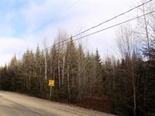 Lot for sale in Lantier, Laurentides, 12, Chemin de la Rivière, 24420791 - Centris
