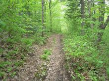 Lot for sale in Val-Morin, Laurentides, Chemin des Hauteurs, 20778262 - Centris