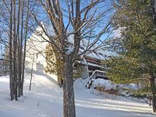 Maison de ville à vendre à Mont-Tremblant, Laurentides, 172, Rue  Pinoteau, 10540055 - Centris