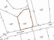 Terrain à vendre à Rawdon, Lanaudière, Avenue du Pic-Bois, 9075810 - Centris