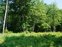 Lot for sale in Saint-Jean-sur-Richelieu, Montérégie, Rue  Lapalme, 12715670 - Centris